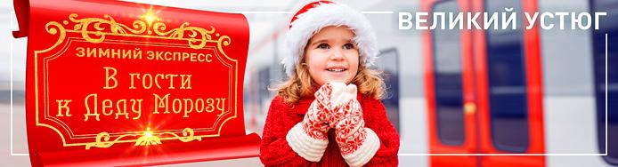 Зимний экспресс В гости к Деду Морозу турпоезд