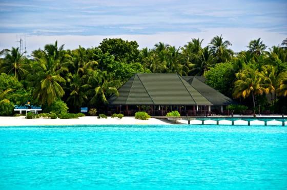 Незабываемый отдых на Мальдивах!